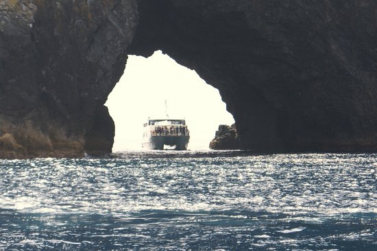 Fullers GreatSights Bay of Islands Day Tours:                   Boat passing through hole in rock