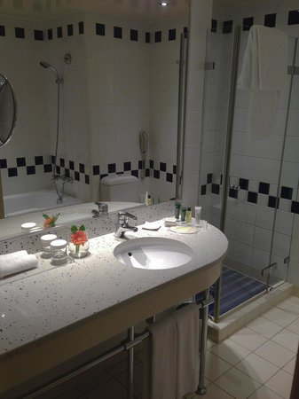 Hilton Sofia:                   bathroom