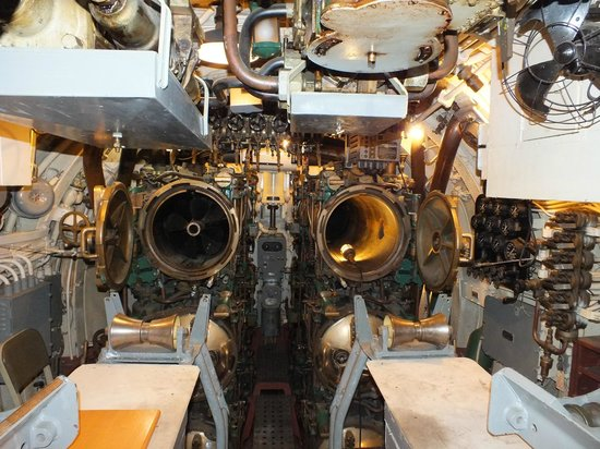 USS Pampanito:                   Forward torpedo room..