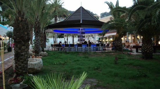 Flamingo Hotel: bar