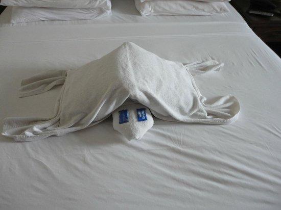 Nazri Resort Hotel:                                     towel art