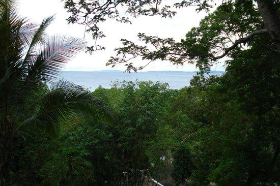 Mamaling Resort Bunaken:                   Bunaken
