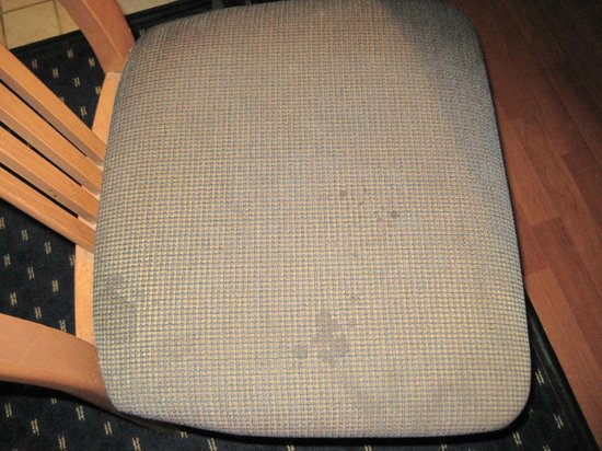 Gatehouse Suites East Lansing:                   Disgustingly stained kitchen chair