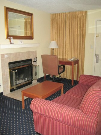 Gatehouse Suites East Lansing:                   Wood burning fire place with NO WOOD.