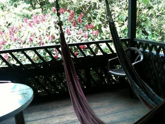 Hostal el Rocio:                   petite terrasse hamacs vue sur écureuils et colibris
