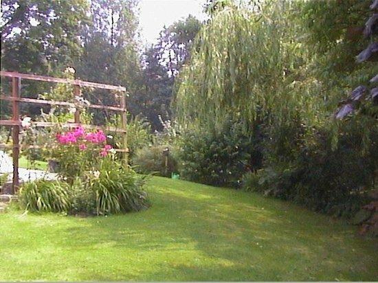 River Cottage: Summer Flowers