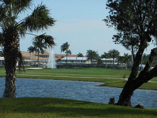 Trump National Doral Golf Course:                   hole # 8