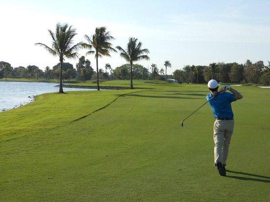 Trump National Doral Golf Course:                   hole # 10