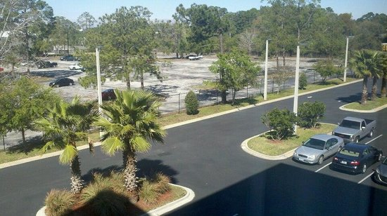 Holiday Inn Hotel & Suites Orange Park :                   View from back side hotel room. Love the trees!