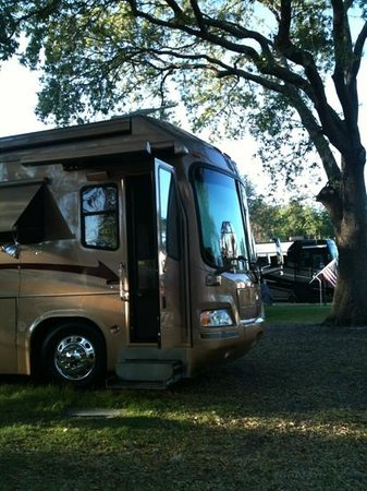 Tampa East RV Resort:                   all the comforts of home
