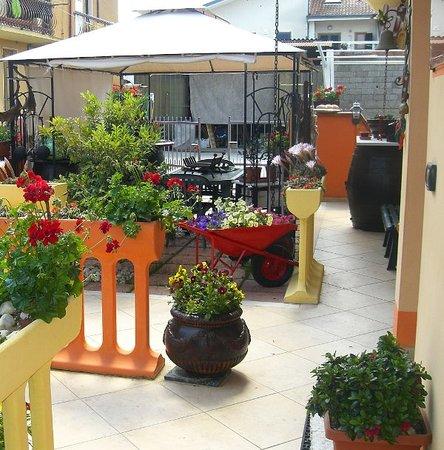 Le Coccinelle di Maria: Garden