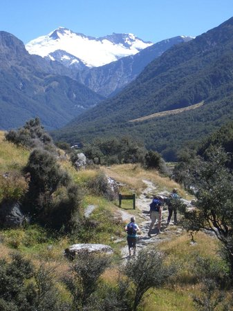 Mount Aspiring National Park:                   The start of the Rob Roy trail