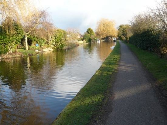 The Cheshire Cat:                   Canal Tow Path