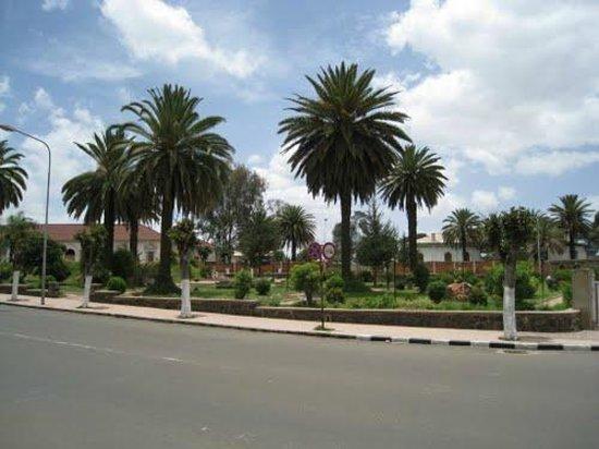 Eritrea:                   asmara dendan street