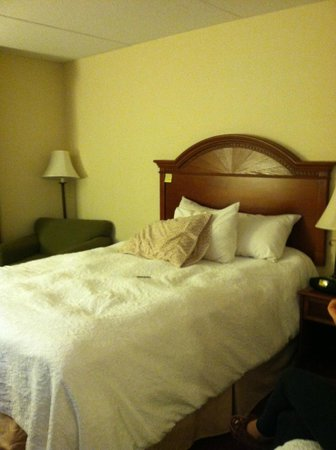 Hampton Inn Lehighton (Jim Thorpe Area) :                   One of the Queen beds