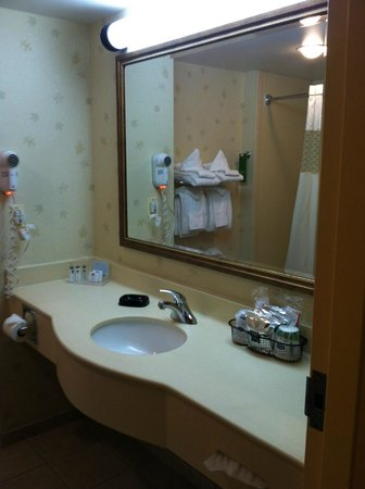 Hampton Inn Lehighton (Jim Thorpe Area) :                   Bathroom