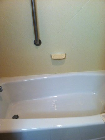 Hampton Inn Lehighton (Jim Thorpe Area) :                   Bathtub