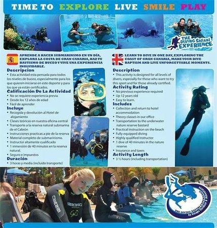Discover Gran Canaria : Scuba Diving in Gran Canaria