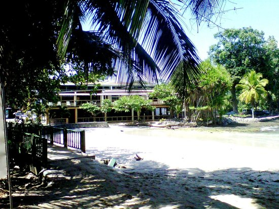 Cahuita National Park Hotel :                   View from the beach
