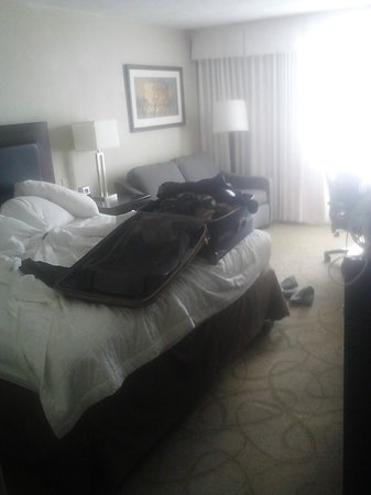 Clarion Hotel:                   ITS a bit messy but here is an idea of what a king suite looks like