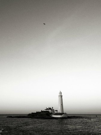 The Metropolitan : St Marys Lighthouse