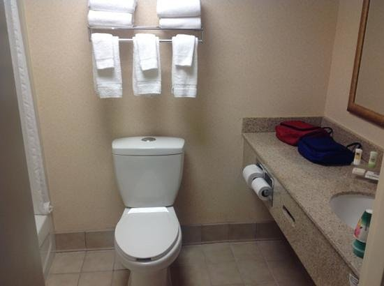 Country Inn & Suites By Carlson, Raleigh-Durham Airport :                   1 bedroom suite bathroom w/ hi-low flush toilet