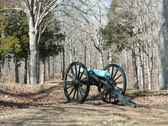 Fort Donelson National Battlefield: View of a cannon along a trench