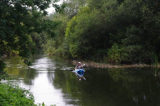 Kayak Tours Bournemouth