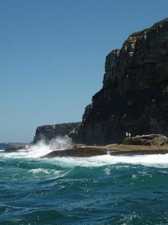Manly Ocean Adventures:                   Coastline near Manly with surf