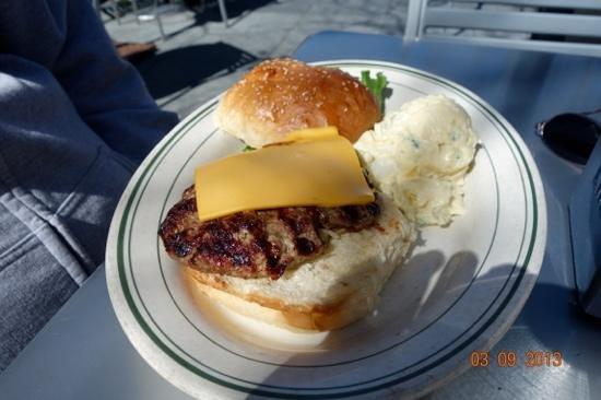 Palo Alto Creamery Fountain & Grill:                   cheese burger