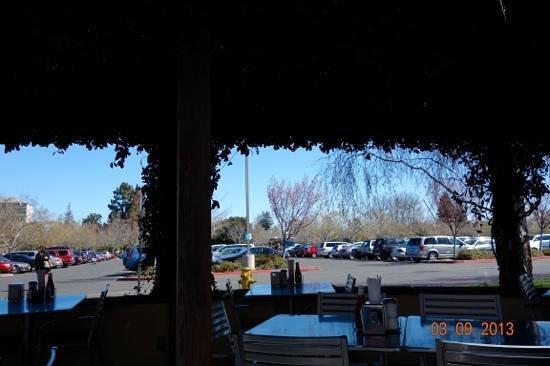 Palo Alto Creamery Fountain & Grill :                   outside patio