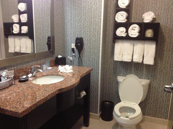 Hampton Inn and Suites Tulsa Central :                   The bathroom