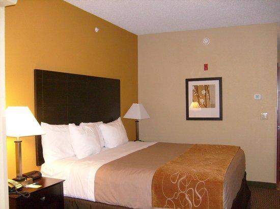 Comfort Inn & Suites Burnet:                   Habitación  con cama King
