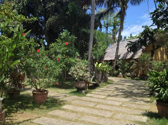 Hibiscus Garden Inn:                   The Garden
