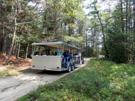 Desert of Maine:                   The jeep tour