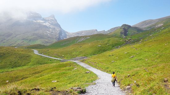 Grindelwald, Switzerland:                   walk towards Bachalpsee