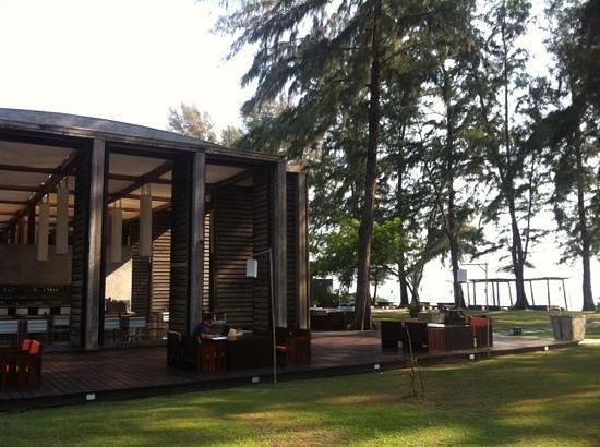 Costa Lanta Restaurant: restaurant under pine trees