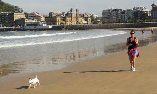 Hotel Niza:                   Morning walk along the beach