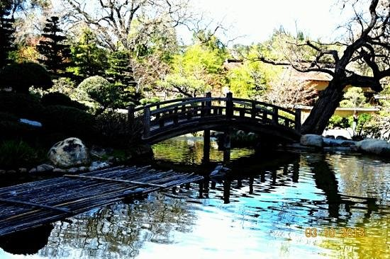 Hakone Gardens: beautiful bridge