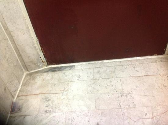 Fiesta Inn Aeropuerto Ciudad de Mexico:                                     moldy and bathroom door with falling sealing or paint