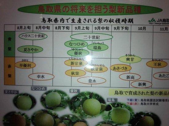 Nashikkokan:                   新甘泉(しんかんせん)食べたい。次回の楽しみに