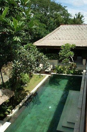 Tepi Laut Villa: Villa Pool