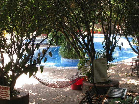 Hotel Shreyas:                   Beautiful swimming pool