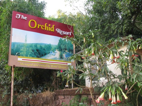 Hotel Shreyas:                   The Shreyas Orchid Resort