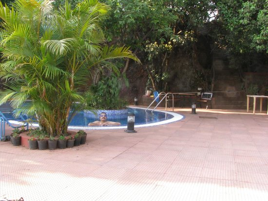 Hotel Shreyas:                   Pool and grounds - Shreyas Orchid