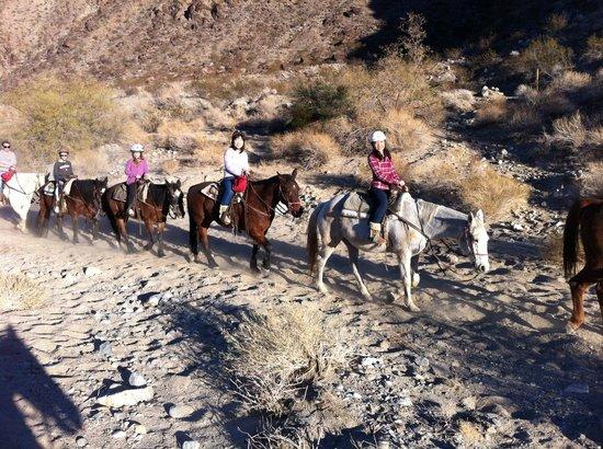 Smoke Tree Stables:                   Horseback Riding