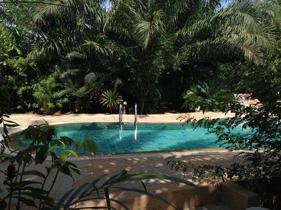 Baan Po Ngam Resort:                   Pool