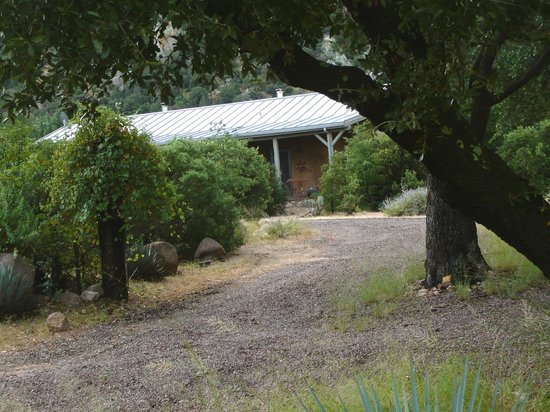 Cochise Stronghold, A Nature Retreat: Oaks, Alligator Juniper and Wild Grape
