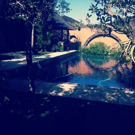 Bebek Tepi Sawah Villas & Spa:                   The gorgeous pool outside our villa