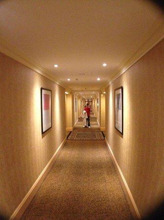 Sheraton Brussels Hotel:                   25 floor